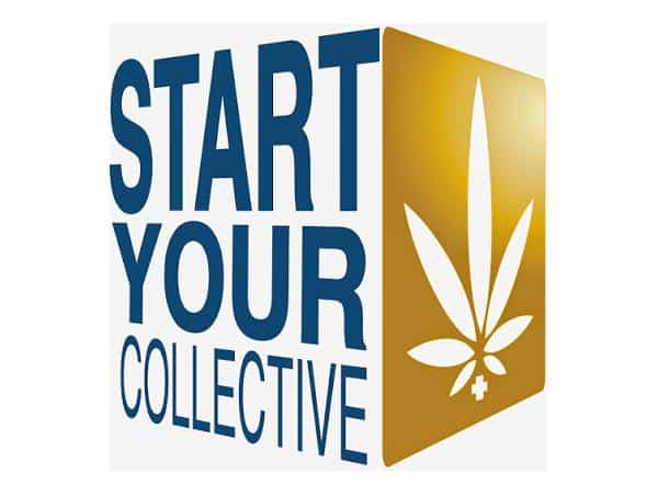Start Your Collective